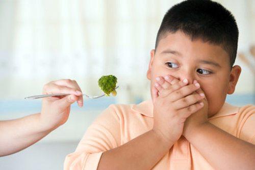 Trẻ ăn nhiều thịt, ít ăn rau, lười vận động là nguyên nhân dẫn đến béo phì