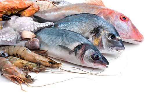 Hải sản là những thực phẩm chức nhiều canxi cho bé
