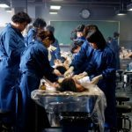 Giải phẫu tử khi là việc mà sinh viên ngành Y phải thực hiện khi học