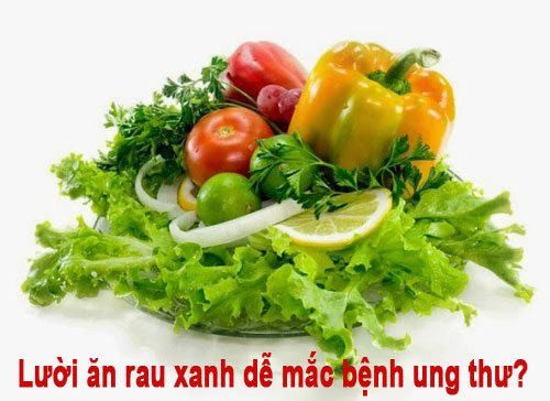 Lười ăn rau xanh dễ mắc bệnh ung thư