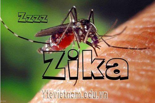 Thai phụ cần làm gì để phòng tránh nhiễm Virus Zika?