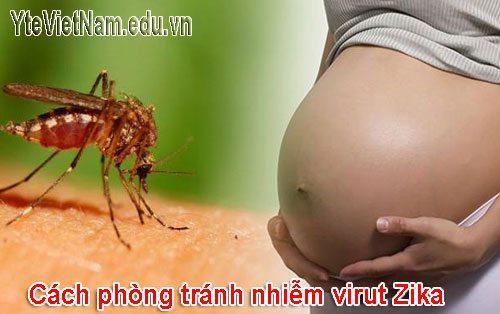 Thai phụ cần làm gì để phòng tránh nhiễm Virus Zika - 2