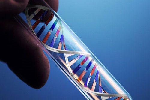 Xét nghiệm đột biến gen có lợi cho những người bị ung thư vú