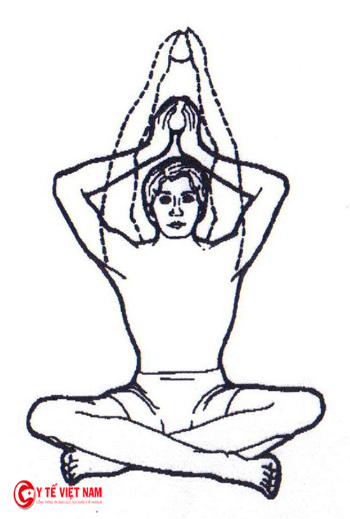 Bài tập tăng cường nhóm cơ lưng