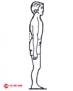 Bài tập tư thế đứng luyện cho khung chậu và cột sống