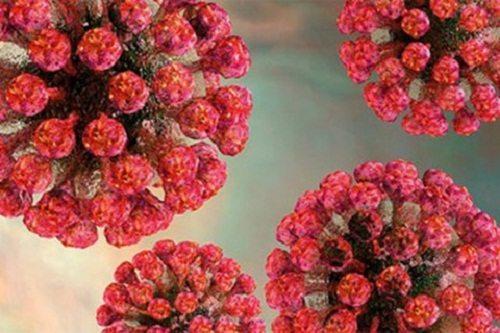 Vi rút Rubella là nguyên nhân gây ra bệnh