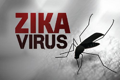 benh-do-virus-zika-gay-ra-chua-co-thuoc-dieu-tri-dac-hieu