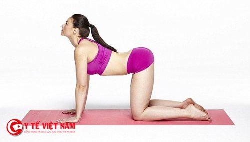Tư thế con mèo trong động tác Yoga