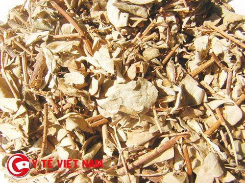 Sài hồ là bài thuốc nam giúp thanh nhiệt giải độc