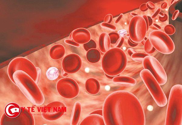 Chỉ mặt đọc nhanh các loại thuốc điều trị bệnh thiếu máu
