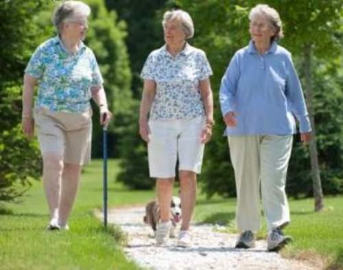 Đi bộ giúp giảm đau cho người bị thoát vị đĩa đệm
