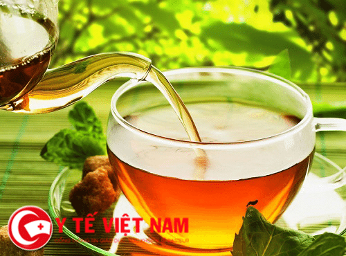 Trà thuốc chữa bệnh sỏi mật.