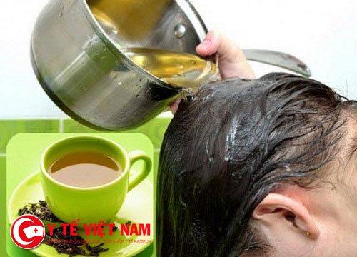 Trà xanh có tác dụng giúp máu dễ lư thông, chống oxy hóa và kích thích tóc mọc nhanh