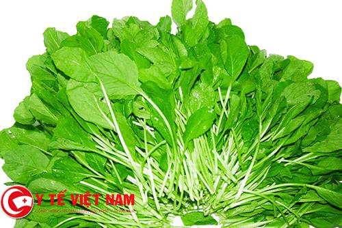 cải xanh thực phẩm vàng dành cho bệnh đau thần kinh tọa