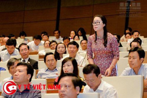 dai-bieu-duong-minh-anh-1479273136904