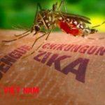 nhiem-virus-zika