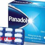 Thành phần chủ yếu trong thuốc Panadol là Paracetamol