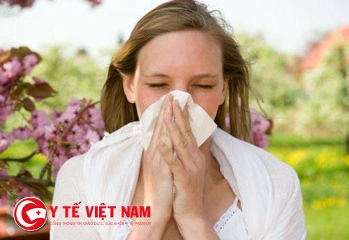 Khi bị viêm mũi dị ứng bạn có thể lựa chọn thuốc Telfast để điều trị theo sự hướng dẫn của bác sĩ.