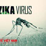Virus Zika chủ yếu lây lan qua muỗi.