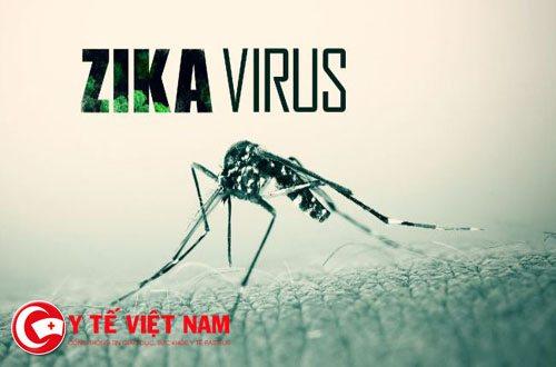 virus-zika1