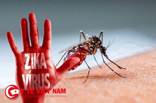 virus_zika