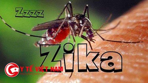 52 người nhiễm virus Zika ở Sài Gòn