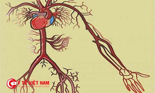 Tuần hoàn máu kém là nguyên nhân của nhiều bệnh lý