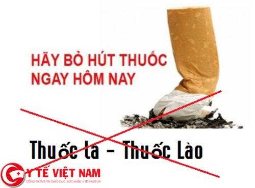 Bỏ hẳn thuốc lào, thuốc lá khi sử dụng bài thuốc chữa bệnh viêm gan cấp tính từ cây nhân trần