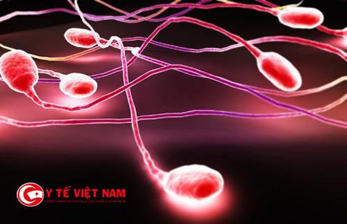 Hiện tượng xuất tinh ra máu sẽ gây ra hiện tượng vô sinh ở đàn ông