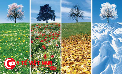 Mỗi mùa đều có thể chuẩn đoán bệnh theo tháng sinh