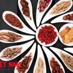 Bài Thuốc Đông y chữa bệnh thiếu máu cơ tim
