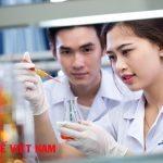 Mô tả việc làm cho Dược sĩ đại học tại Công ty TNHH MTV Cực Nam