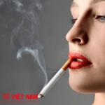 Hút thuốc lá nguyên nhân gây bệnh ung thư ruột