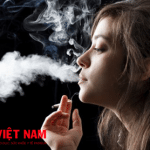 Hút thuốc lá nguyên nhân gây bệnh ung thư tủy