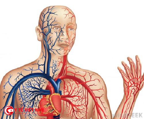 Bệnh tuần hoàn máu kém có nhiều nguyên nhân