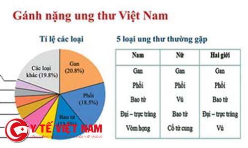 Các loại ung thư ở Việt Nam