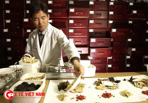 Tuyển dụng bác sĩ Đông y làm việc tại Hà Nội