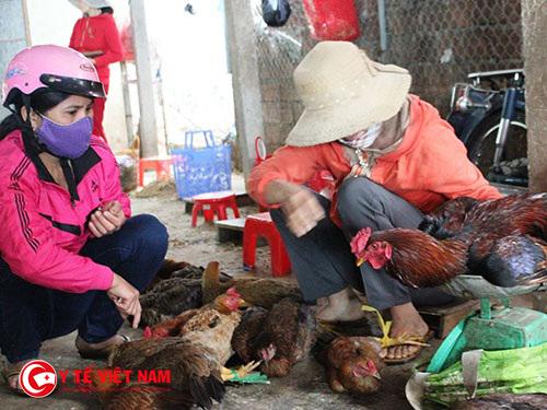 Theo dự thảo của Bộ Công Thương sẽ cấm người dân buôn bán gà vịt