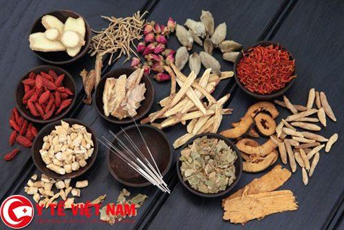 Bài thuốc chữa bệnh gut mãn tính