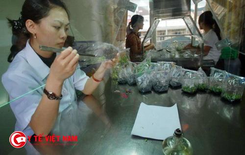 Tuyển dụng kỹ sư Nông nghiệp làm việc tại Hà Nội