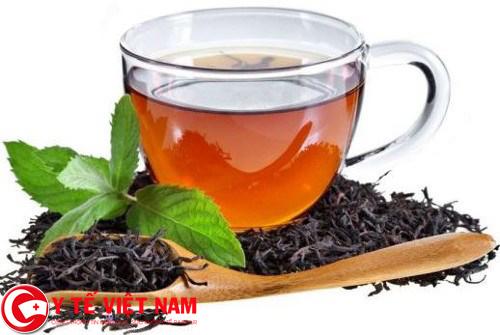 Dùng trà chữa bệnh sốt rét