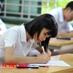 Các trường sẽ có phương án xét tuyển riêngCác trường sẽ có phương án xét tuyển riêng