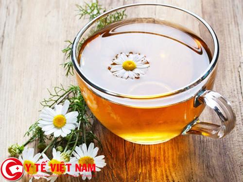 Trà hoa cúc thảo dược đặc trị bệnh thoái hóa cột sống