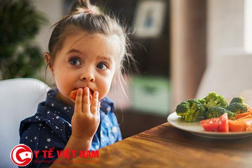 Trẻ biếng ăn có thể ảnh hưởng đến chiều cao, cân nặng cũng như trí não
