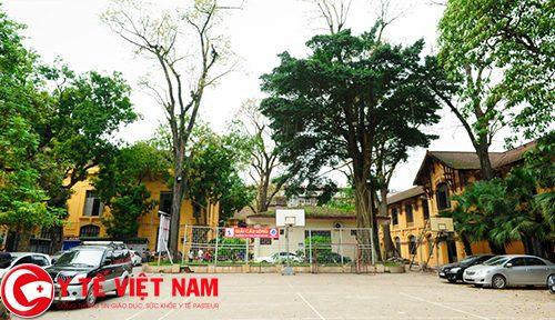 Diện tích khuôn viên của trường khá nhỏ. Tuy vậy, trường vẫn có khá nhiều cây xanh, tạo nên sức sống cho ngôi trường trăm tuổi