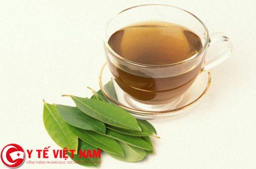 Sử dụng lá vối tươi để điều trị viêm đại tràng cấp tính