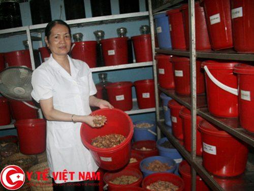 Lương y Đặng Thị Lâm chữa bệnh gút