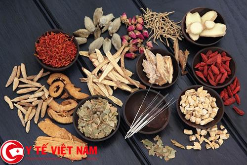 Bài thuốc Đông y chữa bệnh gút dành cho người bị tăng huyết áp
