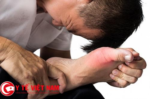 Lá trầu không thần dược chữa bệnh gút cực tốt