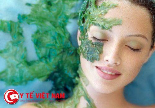 Bí đao khắc phục tình trạng da khô